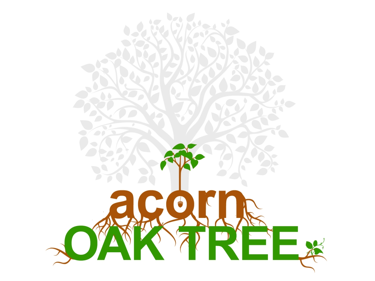Acorn to oak tree: finding my potential and purpose